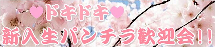 無修正エロ動画:ドキドキ❤新入生パンチラ歓迎会:無毛おまんこ