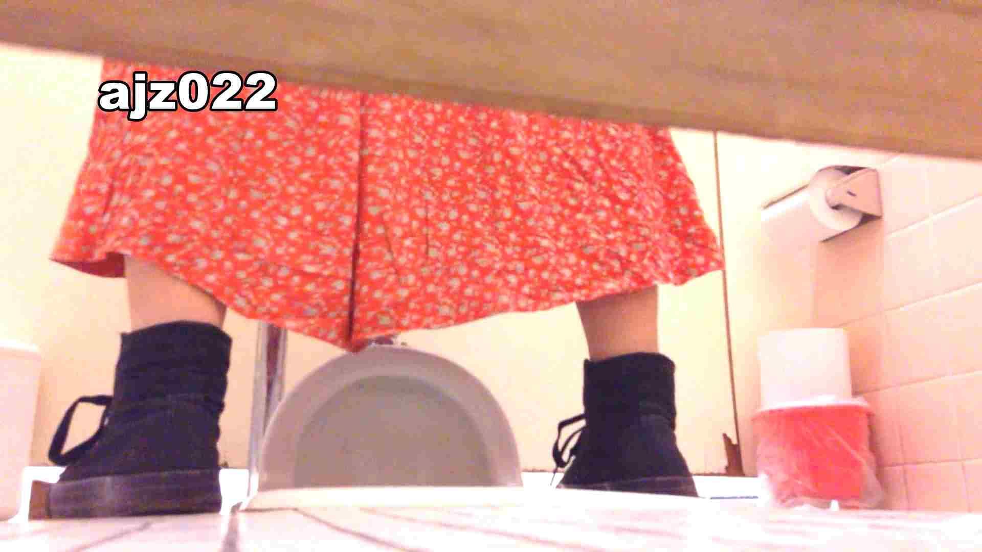 某有名大学女性洗面所 vol.22 和式 盗み撮り動画 11枚 2
