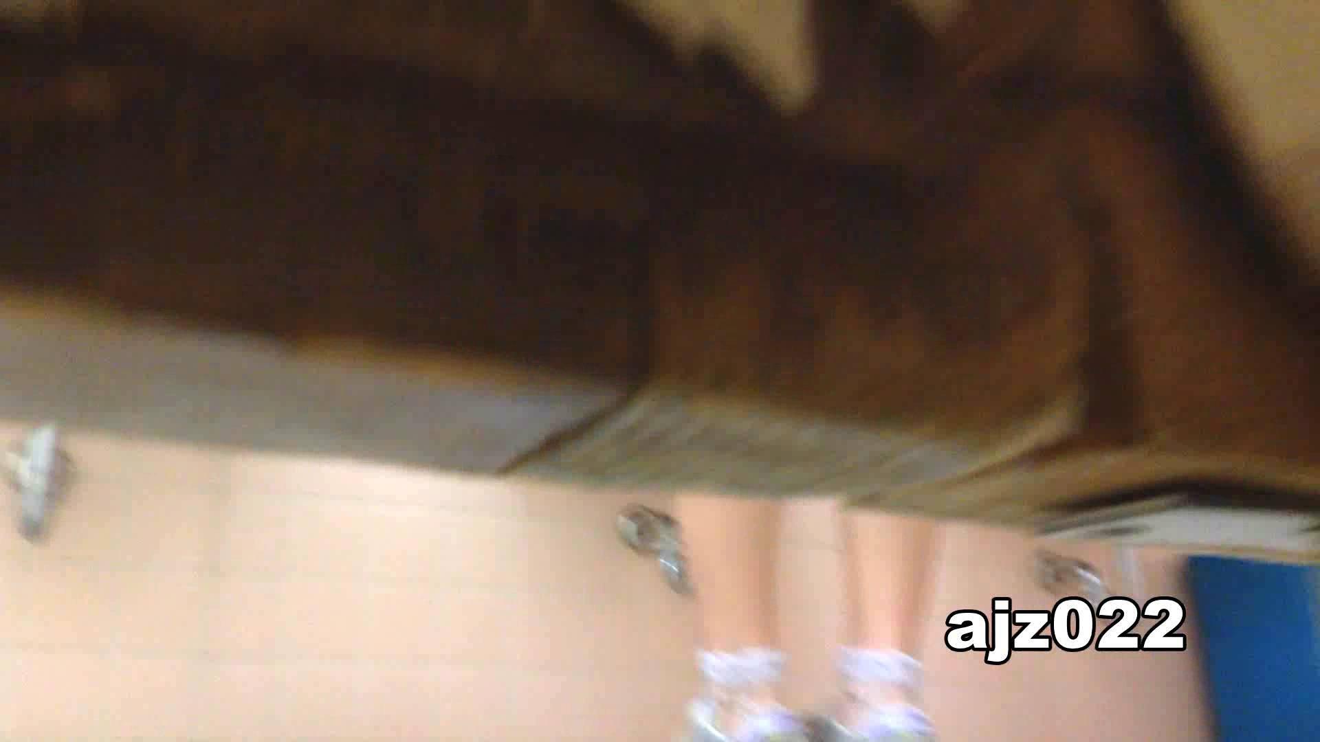 某有名大学女性洗面所 vol.22 和式 盗み撮り動画 11枚 11