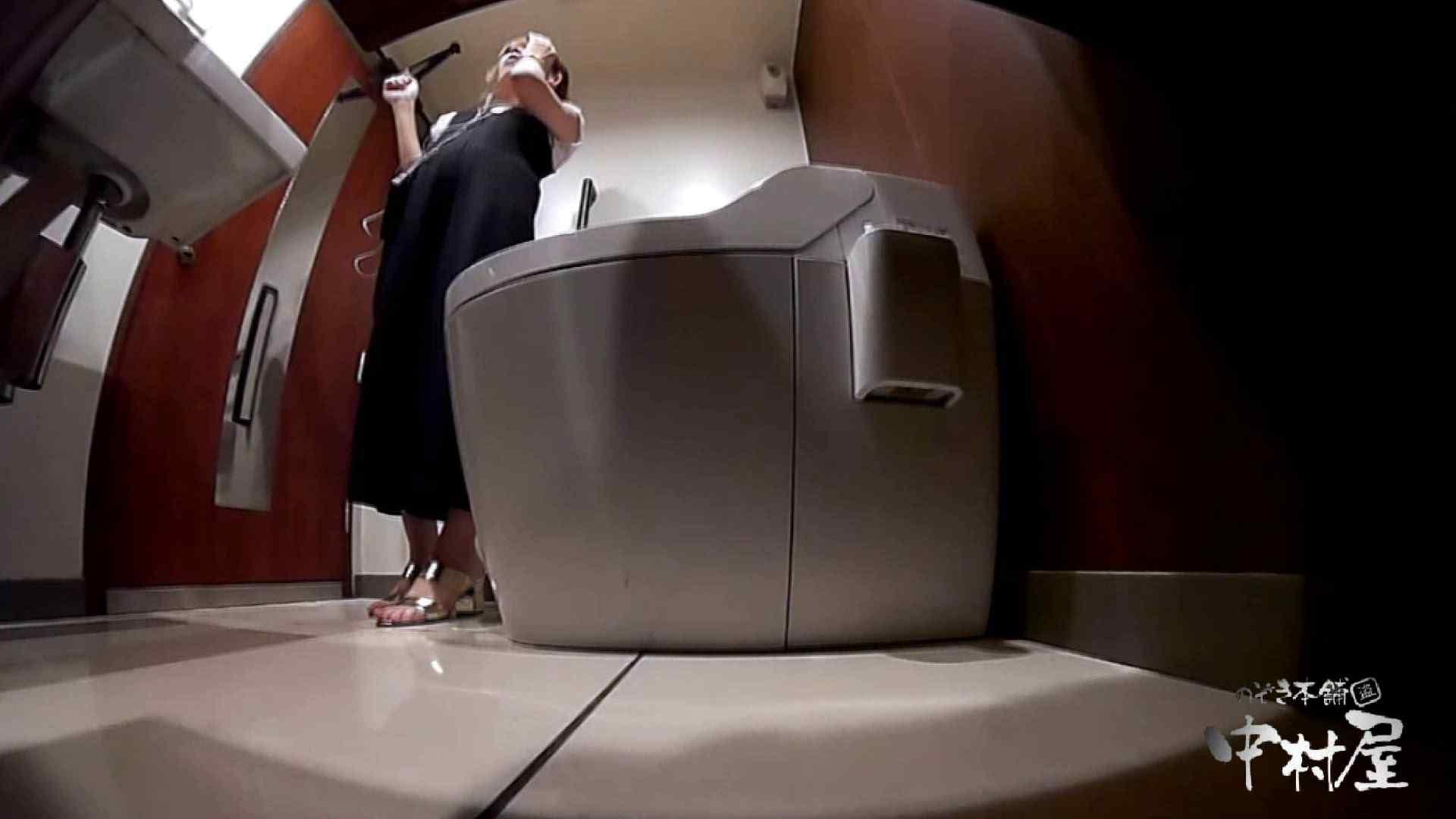 高画質トイレ盗撮vol.19 トイレの中まで 盗撮動画紹介 11枚 6