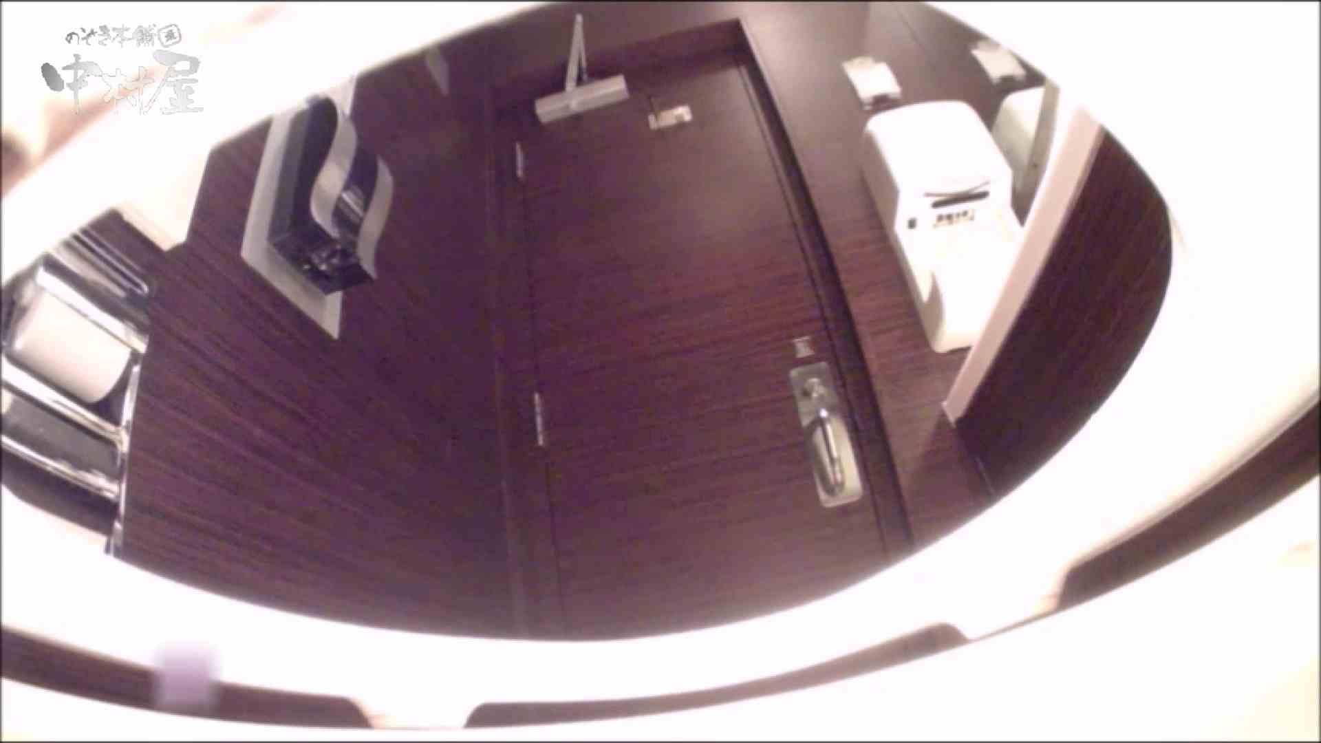女子トイレ盗撮~某ファミレス編~vol.19 女子トイレの中では すけべAV動画紹介 10枚 7