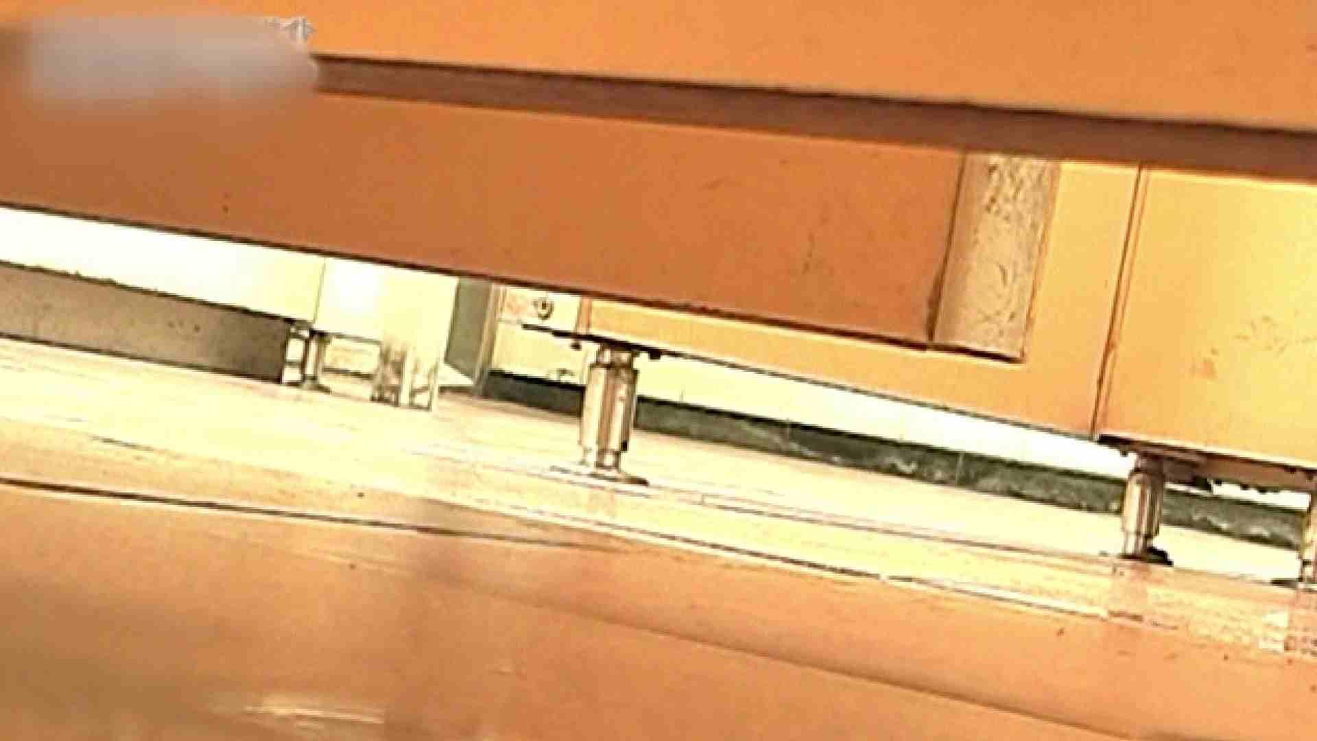 ロックハンドさんの盗撮記録File.55 厠の中で エロ無料画像 9枚 6