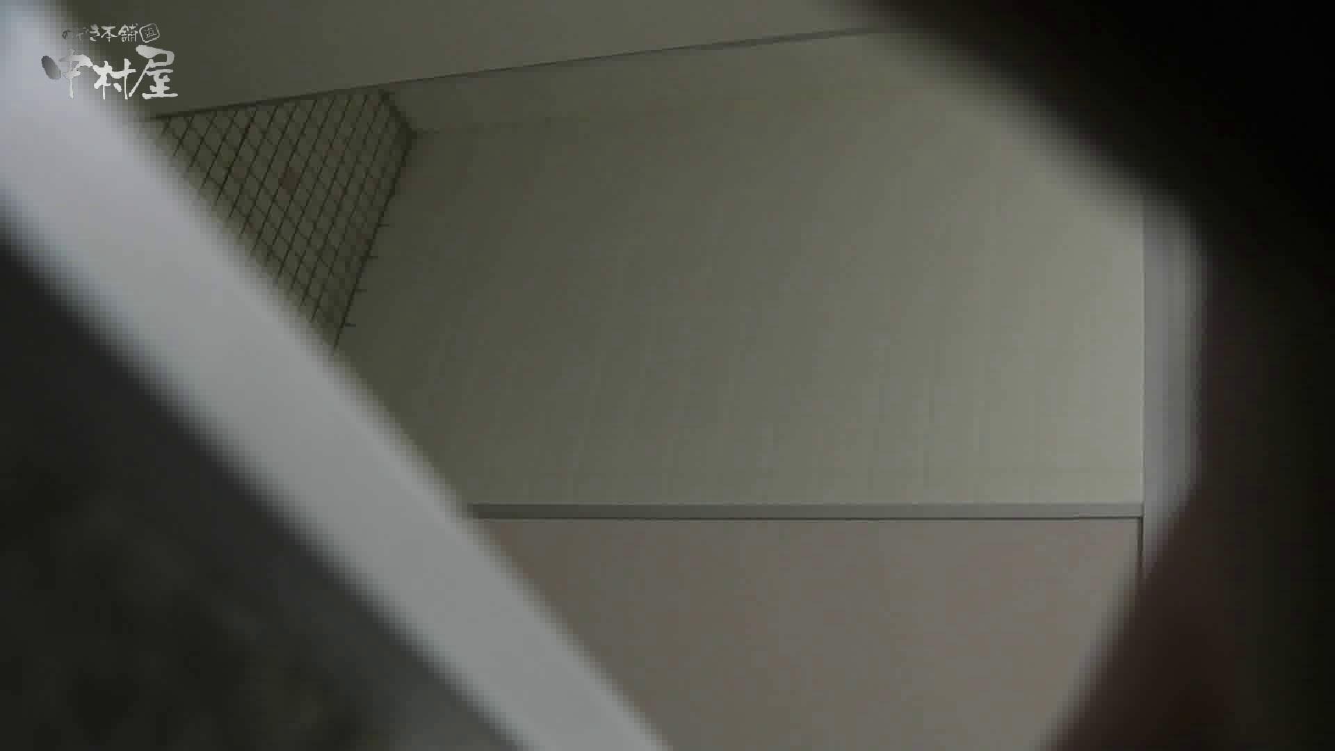 洗面所突入レポート!!vol.21 女子トイレの中では おめこ無修正画像 11枚 8