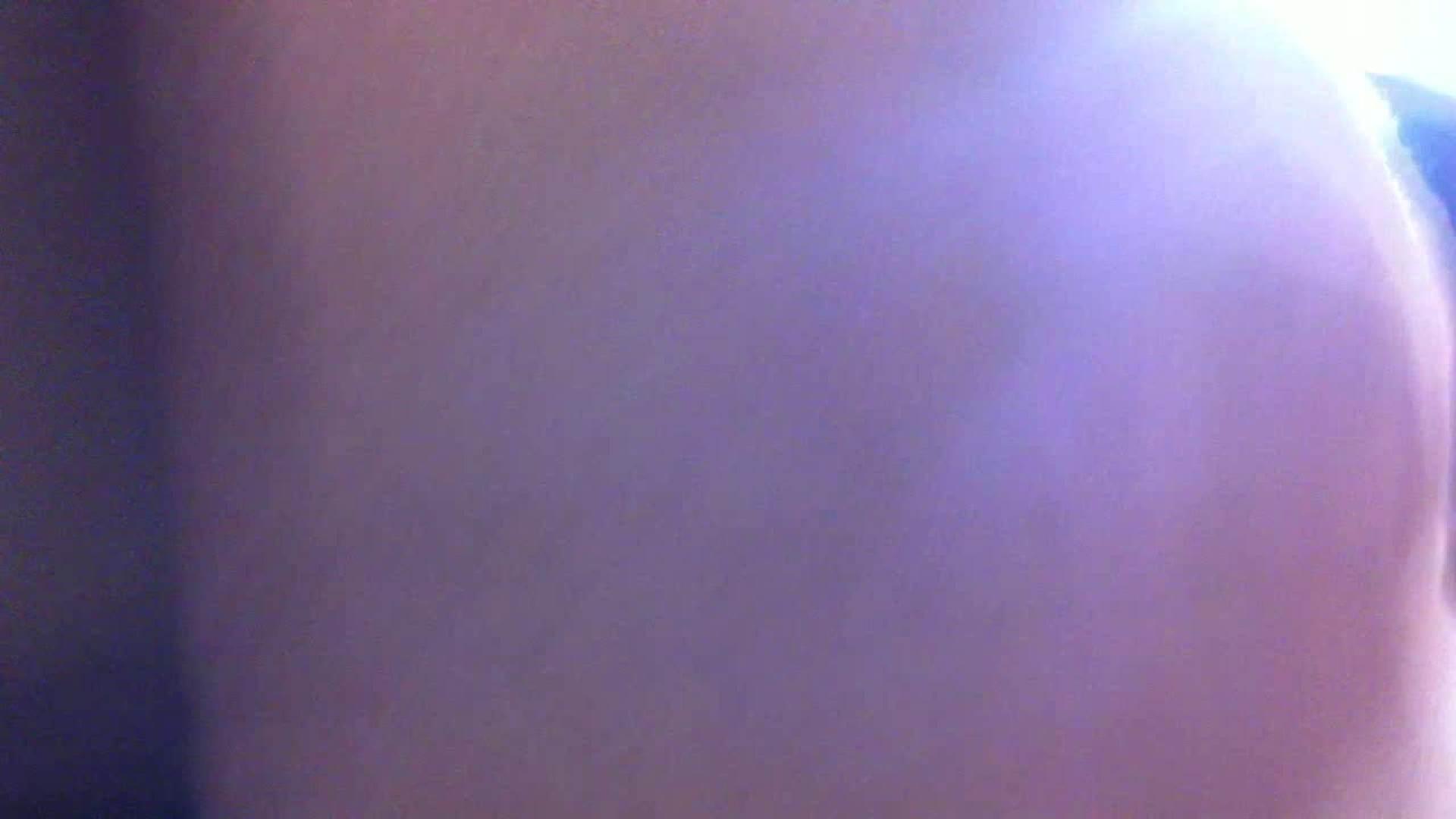 フルHD ショップ店員千人斬り! 大画面ノーカット完全版 vol.81 チラ見えで興奮 AV動画キャプチャ 11枚 10