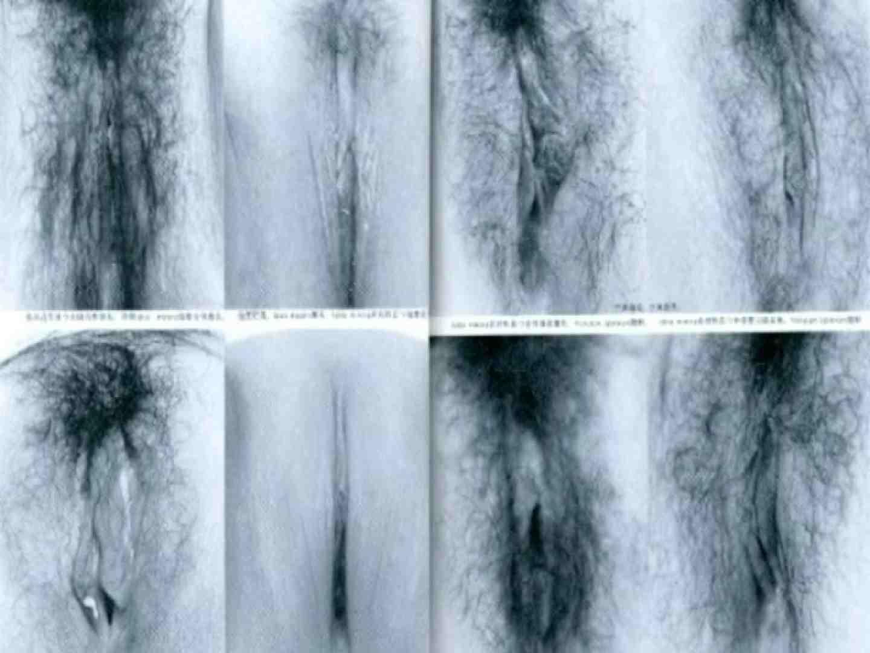 日本女性の外性器① 性器 セックス画像 10枚 5