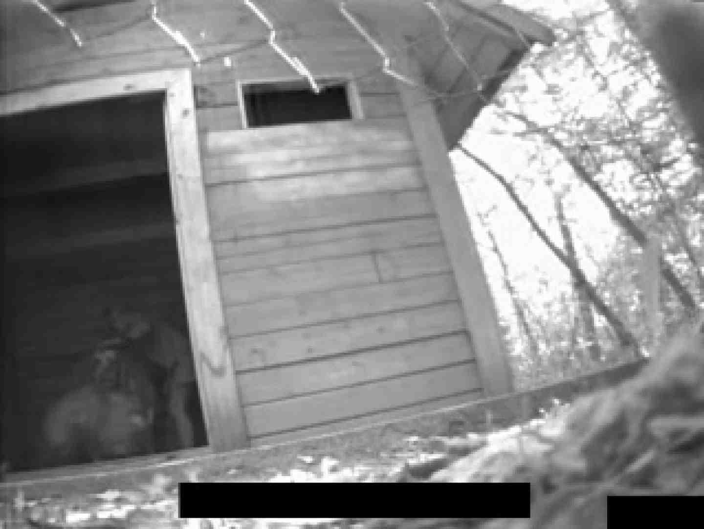 白人さんの野外排せつ盗撮vol.2 排泄特集 | ハプニング特集  10枚 1